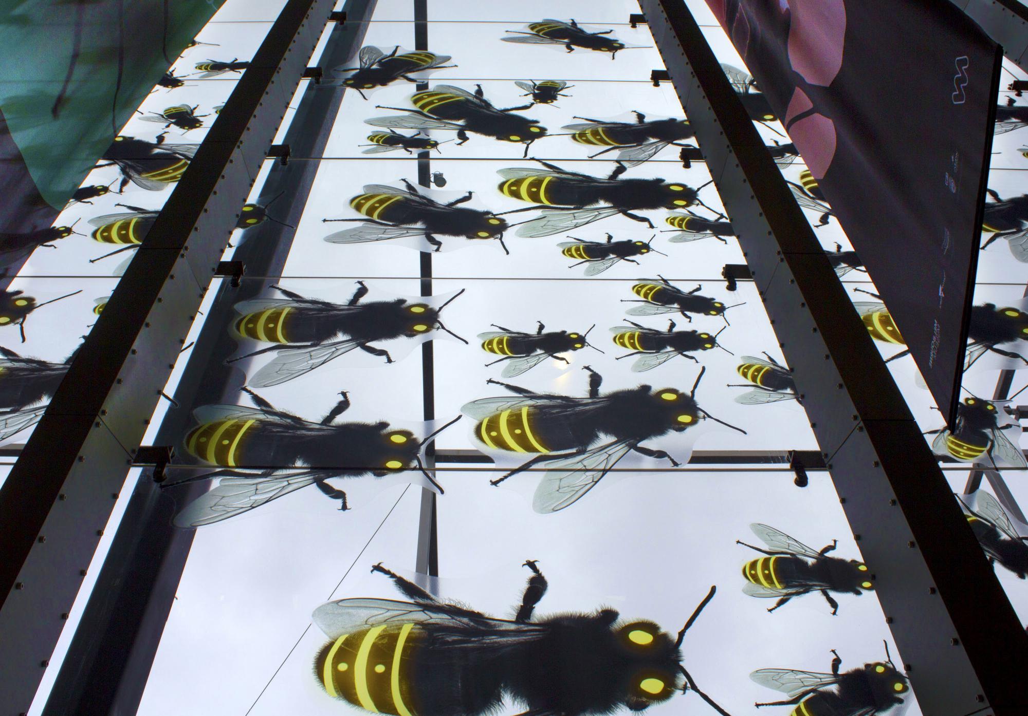 Melbourne Museum - Bug Lab